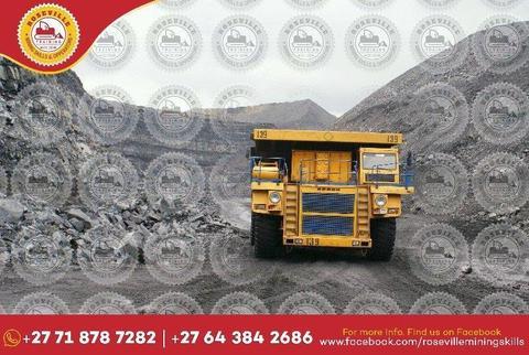 Boiler maker skills Excavator Dump Truck Front End Loader Tower Crane Drill Rig 0643842686