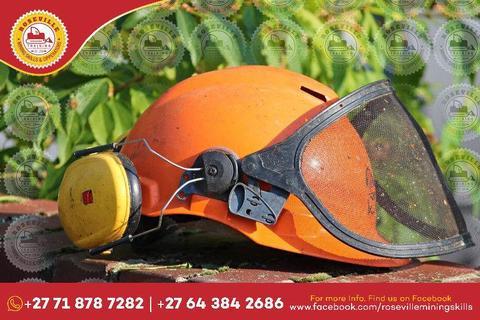 UTILITY VEHICLE PLANT OPERATOR TRAINING 0718787282