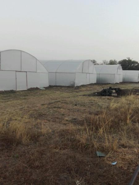 Greenhouse | Hydroponic Tunnels Rayton Pretoria 0747227334