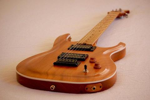 Tonetree Raptor - 2017 Model - Electric Guitar