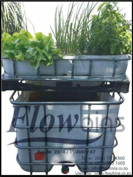 Gauteng- NEW Aquaponics complete starter kits - Growbed, Fish tank, Water and Air pump, Piping, Etc.